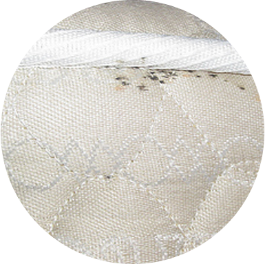 Faecal spots created by bed bugs